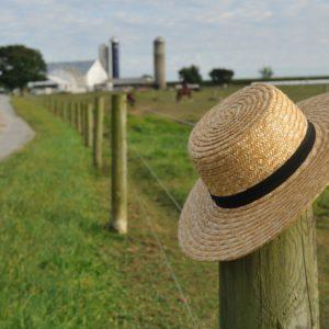 Image of Amish Farm