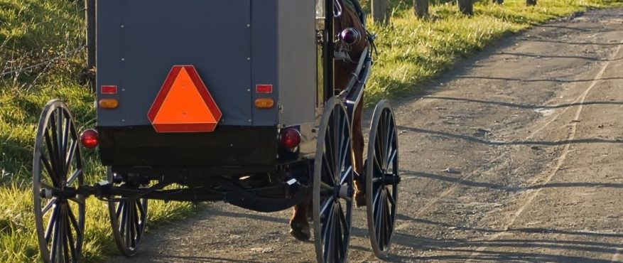 Hors and Buggy image